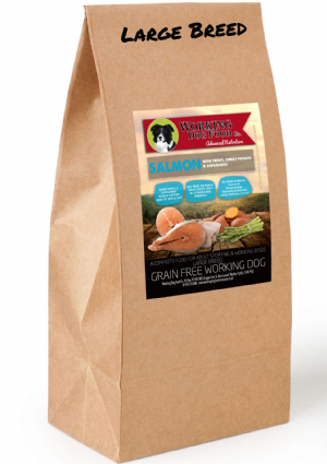 Grain Free Adult Large Breed Salmon, Trout Sweet Potato & Asparagus Complete Dry Dog Food